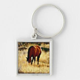 馬を牧草を食べること キーホルダー
