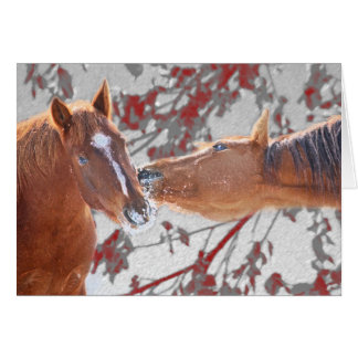 馬カード カード