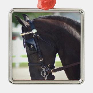 馬ショーを運転するクルミの丘のcarraige メタルオーナメント