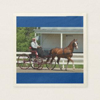 馬ショーを運転するクルミの丘キャリッジ スタンダードカクテルナプキン