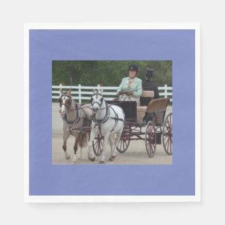 馬ショーを運転するクルミの丘キャリッジ スタンダードランチョンナプキン