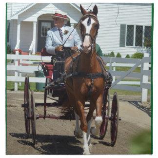 馬ショーを運転するクルミの丘キャリッジ ナプキンクロス