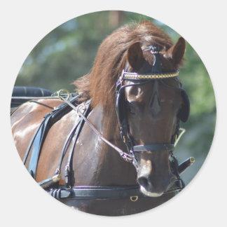 馬ショーを運転するクルミの丘キャリッジ ラウンドシール