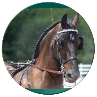 馬ショーを運転するクルミの丘キャリッジ 磁器プレート