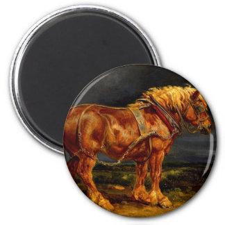 馬写真11 マグネット