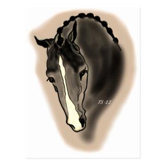 馬場馬術 ポストカード
