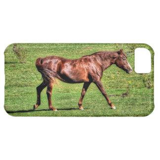 馬好きのための馬のギフト! iPhone5Cケース