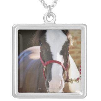 馬小屋で結ばれる馬のクローズアップ シルバープレートネックレス