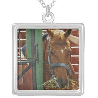 馬小屋に立っている馬 シルバープレートネックレス