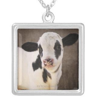 馬小屋の若い子牛のポートレート シルバープレートネックレス
