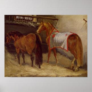 馬小屋の馬 ポスター