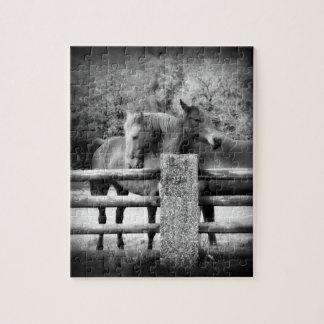 馬愛-組の愛情のある容認の馬 ジグソーパズル