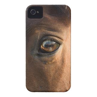 馬頭部のブラックベリーのはっきりしたな箱 Case-Mate iPhone 4 ケース