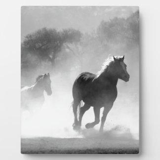 馬430441 フォトプラーク