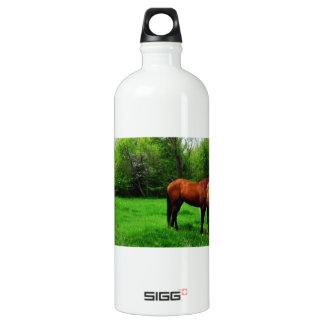 馬 ウォーターボトル
