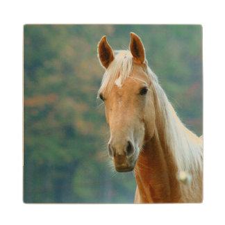 馬 ウッドコースター