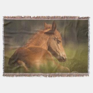 馬 スローブランケット