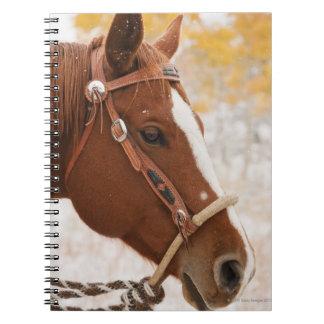 馬 ノートブック