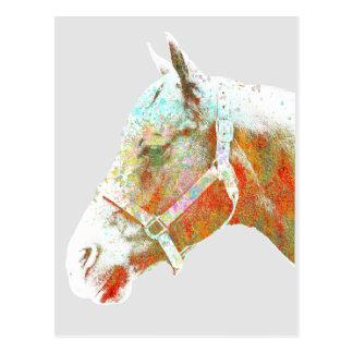 馬 ポストカード
