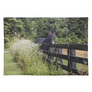 馬 ランチョンマット