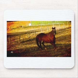 馬、農家の馬、動物、野生の馬 マウスパッド