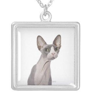 驚かされた表現のSphynx猫 シルバープレートネックレス