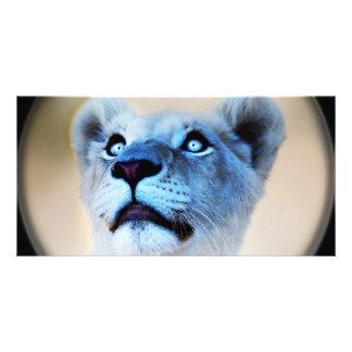 驚きの終わりの白いライオンの一見 カード