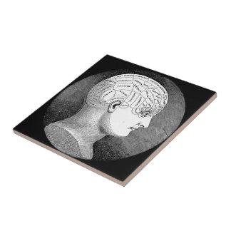 骨相学のヘッド図表 タイル