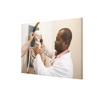 骨組の解剖学を調査している学生の医者 キャンバスプリント