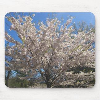 高い公園の桜 マウスパッド