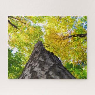 高い梢 のカナダの森林 ジグソーパズル