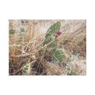 高い砂漠のサボテン キャンバスプリント