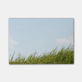 高い草の青空のポスト・イット ポストイット