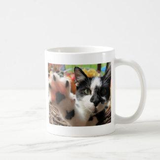 """""""高い5""""かわいい猫の写真 コーヒーマグカップ"""
