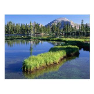 高いUINTASの荒野、UT、米国のpenisula、 ポストカード
