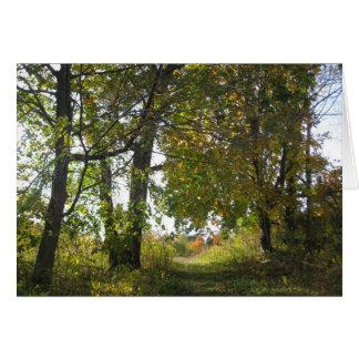 高台の農場の自然の聖域 カード