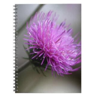 高山のアザミ(Carduusのdefloratus) ノートブック