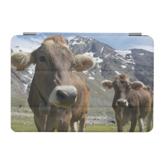「高山のブラウン」の品種の牛 iPad MINIカバー