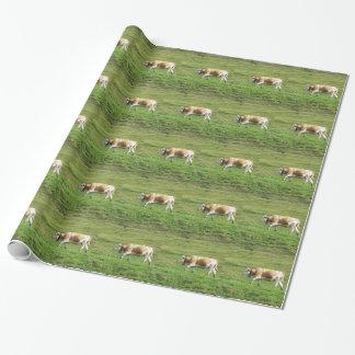 高山の牧草地の独身のな牛 ラッピングペーパー