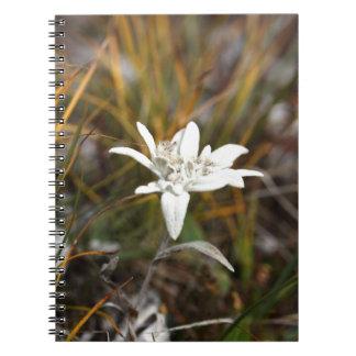 高山のEdelweiss ノートブック