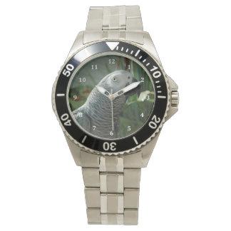 高貴なアフリカ灰色のオウム 腕時計