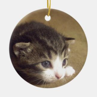 魅了された子ネコ セラミックオーナメント