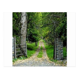 魅了された庭への林道 ポストカード