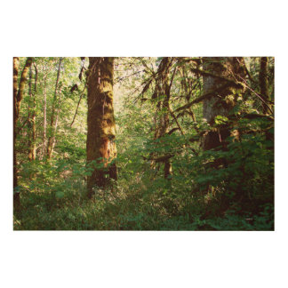 魅了された森林木パネル ウッドウォールアート