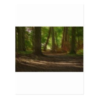 魅了された森林 ポストカード