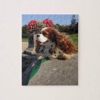 魅力の子犬! ジグソーパズル