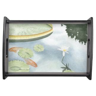 魚およびユリとのコイの池の反射 トレー