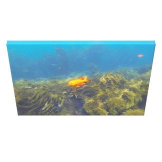 魚および珊瑚礁 キャンバスプリント