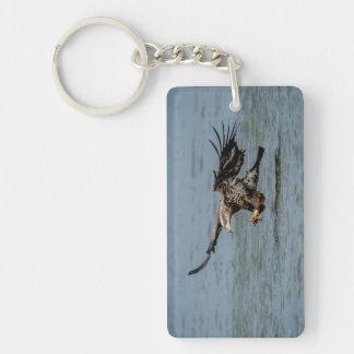 魚のための未熟な白頭鷲のダイビング キーホルダー