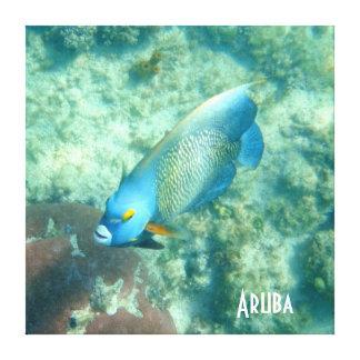 魚のアルバの水中写真 キャンバスプリント